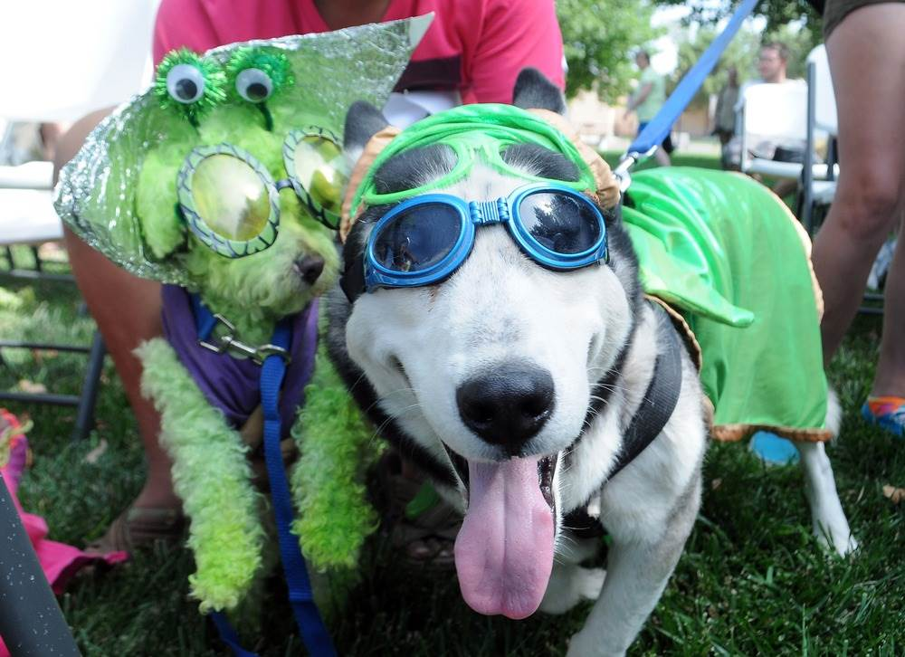 Belmar Fall Festival & Pet Costume Parade
